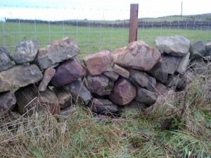 Poor quality dry stone wall