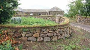 Dry stone and turf topped wall